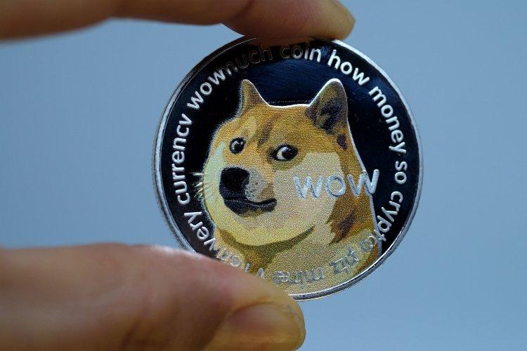 Dogecoin: 3 महीनों में 1600% रिटर्न के पीछे क्या वजह? पूरा ब्योरा